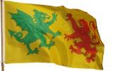 Flag of the Swabian Kings of Gallaecia